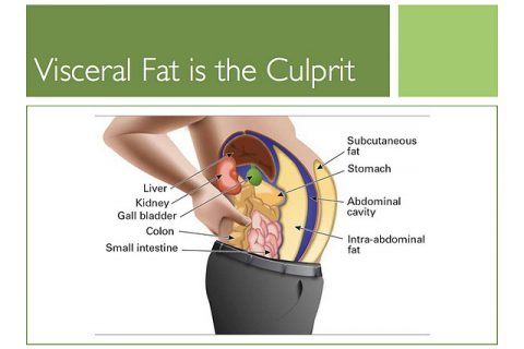 abdominal-fat-jpg