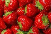 strawberry-174x116.jpg
