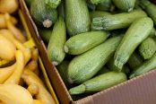 zucchini-174x116.jpg