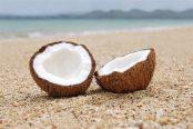 coconut-174x116.jpg