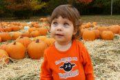 pumpkin-174x116.jpg